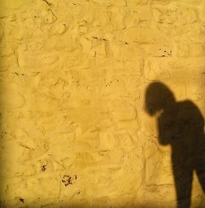 a-murmuration's Profile Picture