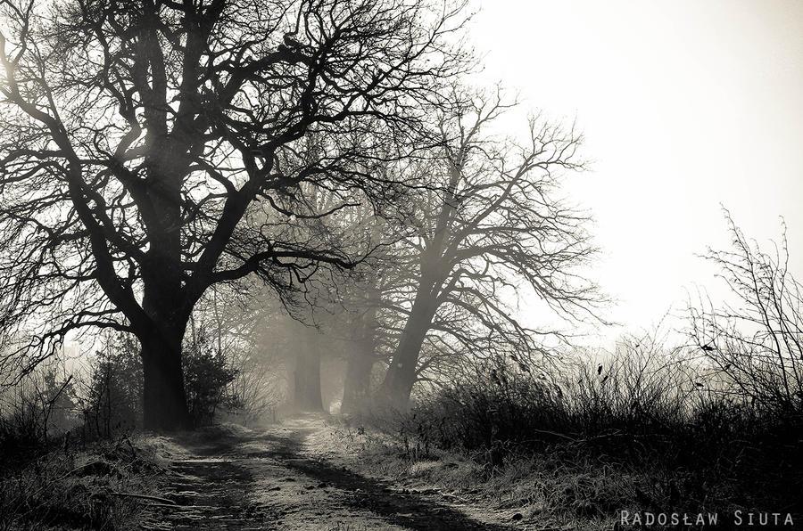 Alone again.. by Zaprzepaszczonesily