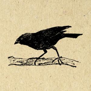 VintageRetroAntique's Profile Picture