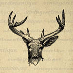 Antique Deer Digital Graphic No.444