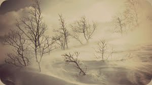 The Winter Wasteland by ZPK-Art