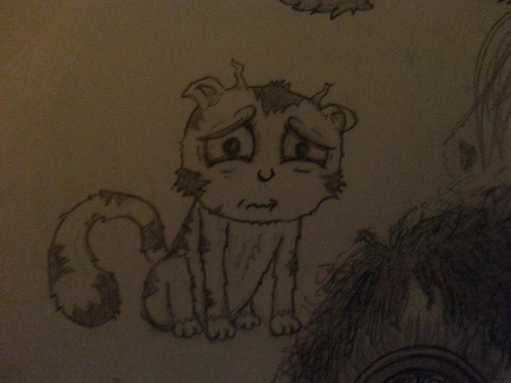 A sad cat by Theodyn