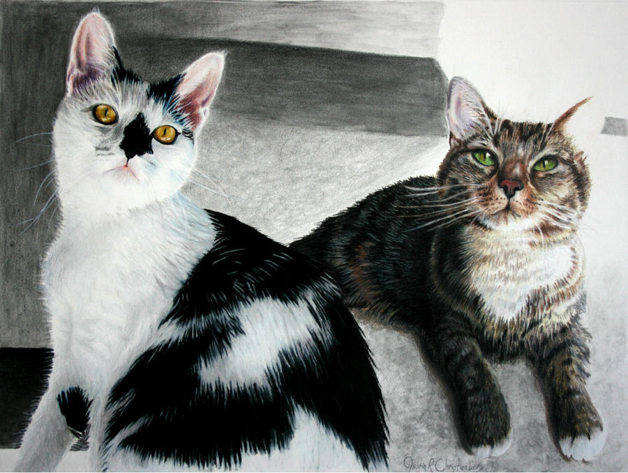 Untitled ( 2 Cats)