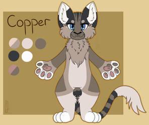 Copper  by giraffeDJ
