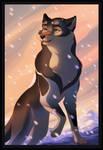 [ DoTW ] - Winter Is Here