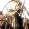 Mushroomhead Skinny Avatar by Neogren