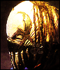Mushroomhead Little Dan Avatar by Neogren