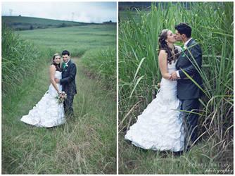 Love in the fields