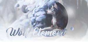 Wolf Element hiver