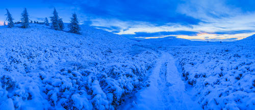 Smugglers Road, Auchterhouse Hill