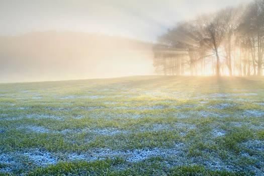 Kincaldrum Frost