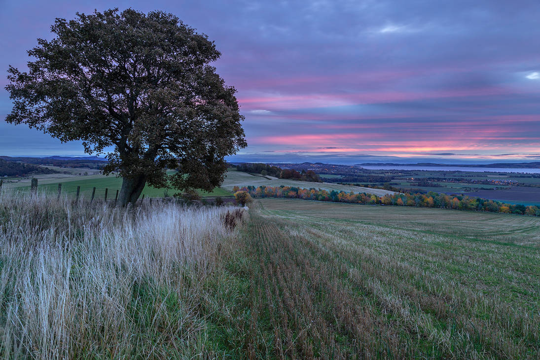 Dundee at Dawn by Greg-McKinnon
