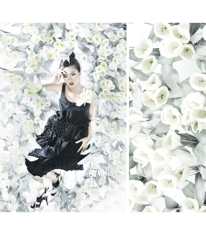 White Tulip 02 by protogeny