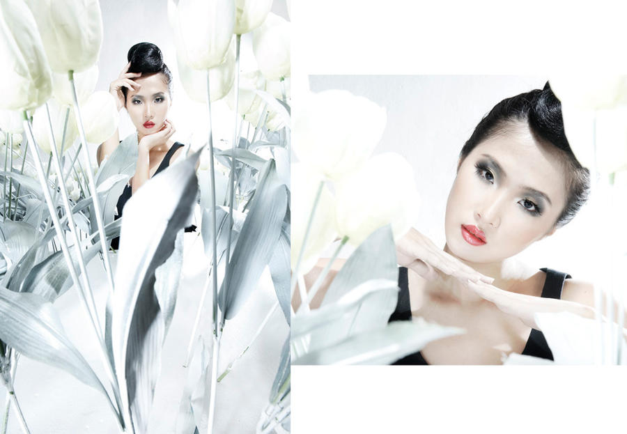 White Tulip 04 by protogeny