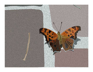 Butterfly on Brick by tyrsia