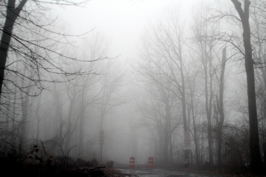 Foggy 2 By Twilitesmuse On Deviantart