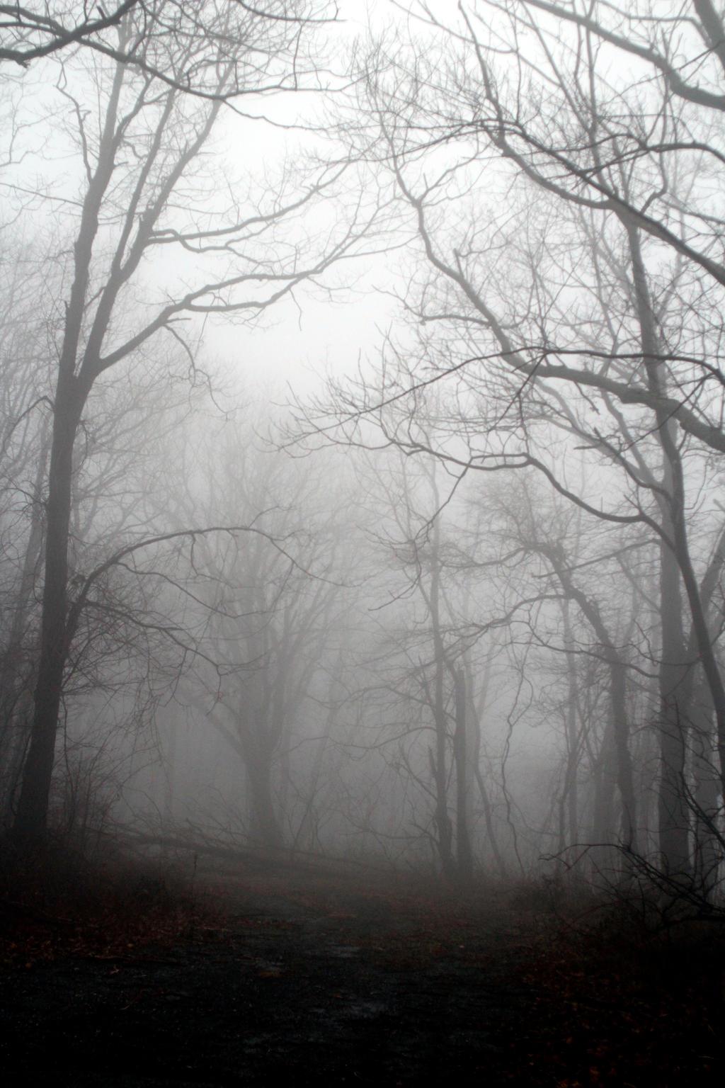 Foggy 9
