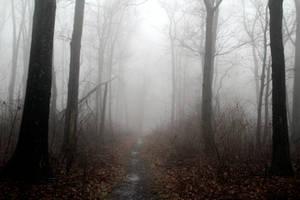 Foggy 5 by TwilitesMuse