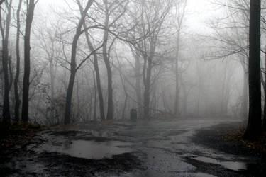 Foggy 1 by TwilitesMuse