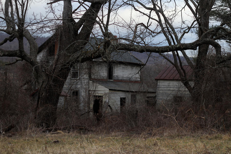 Image Result For Horror Movies Cabin