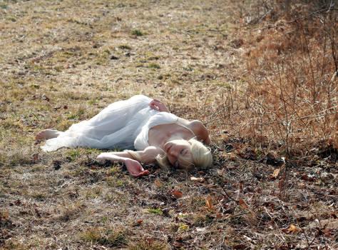 The Virgins Suicide 2