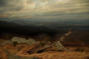 Fallen Tree by TwilitesMuse