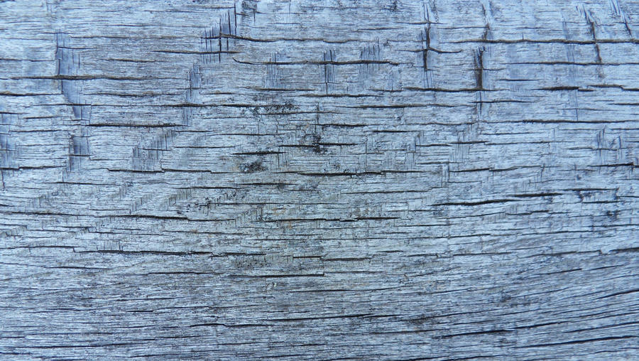 wood texture 14 by carlbert