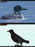 Pixel Birds