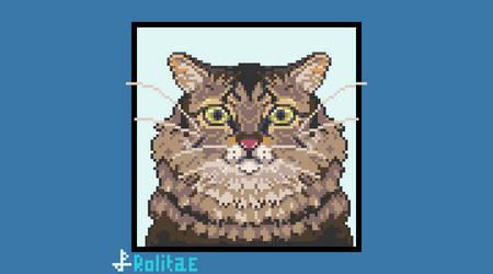 Pixel Portrait of my Cat