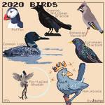 My Birds (2020)