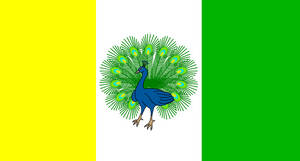 Bandera de la Provincia de Paragua (Palawan)