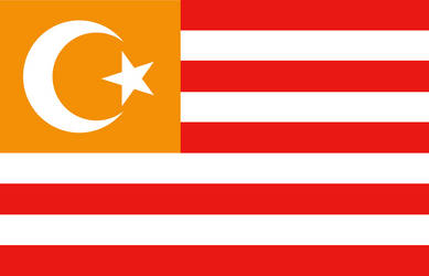 (Alternate) Flag of Turkestan