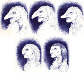 Inktober: Harpy portraits