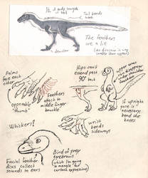 Troodon study doodles by Paperiapina