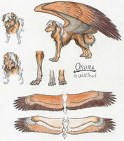 Orora character sheet by Paperiapina