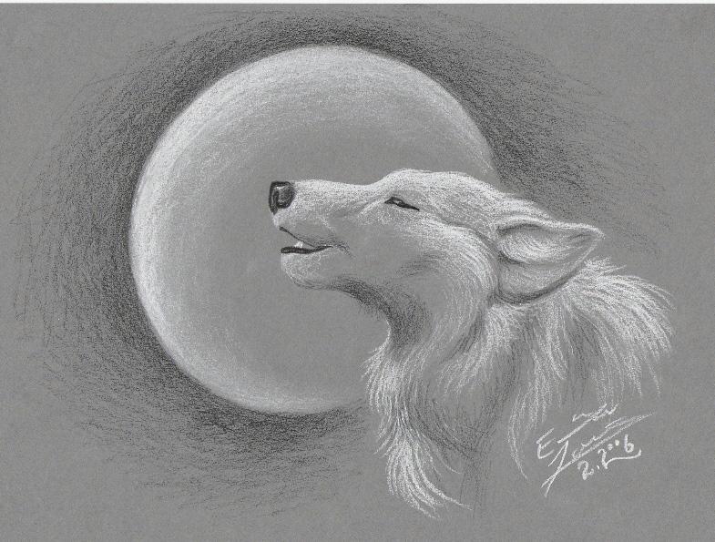 Картинки нарисованные волки