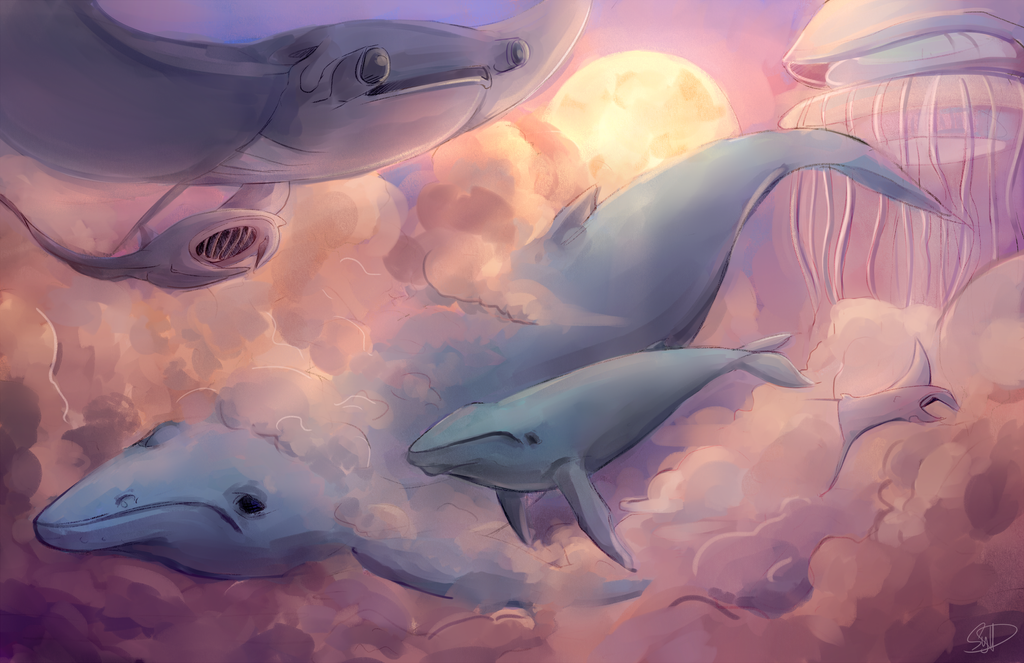 when whales fly by Sydesu