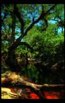 Econ River II