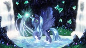 Magic Pond Luna