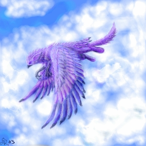 Soar by saboo
