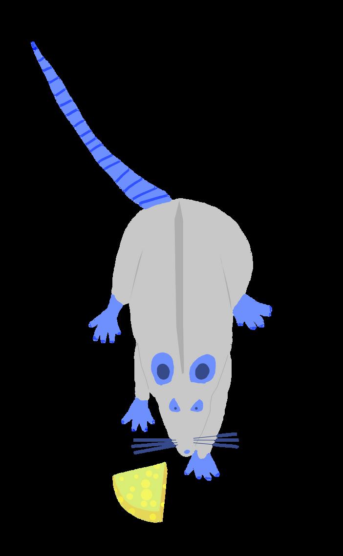 Rat :3 by kunie5