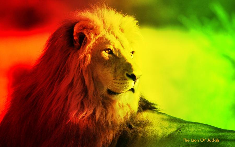 The Lion Of Judah by Psychoshroomz on DeviantArt Rasta Lion Wallpapers