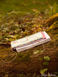 Letters To A Lost Love