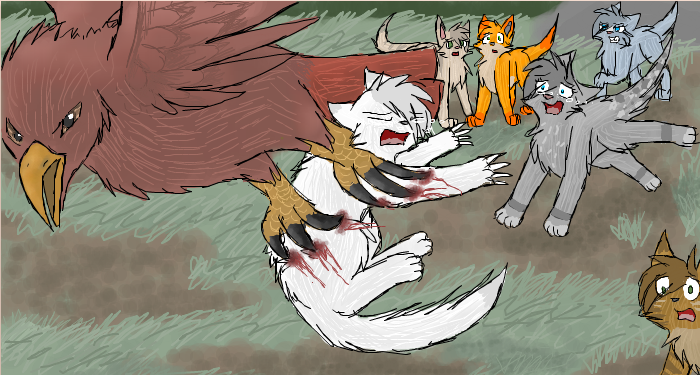 Warrior Cats Blossomkit The Fate of a D...