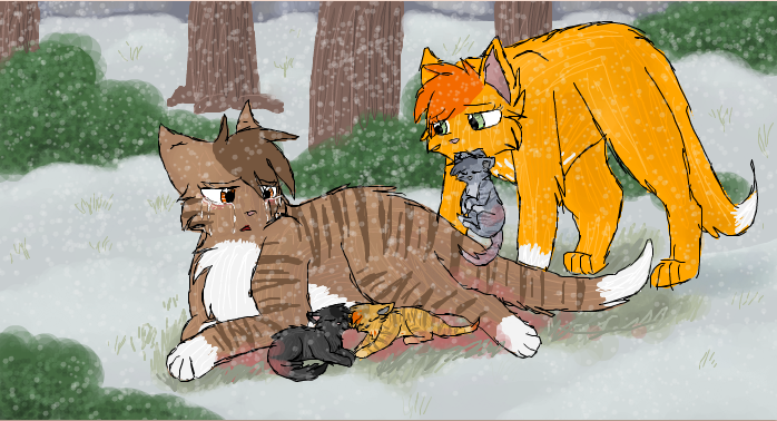 Simba Warrior Cat Oc Drawing