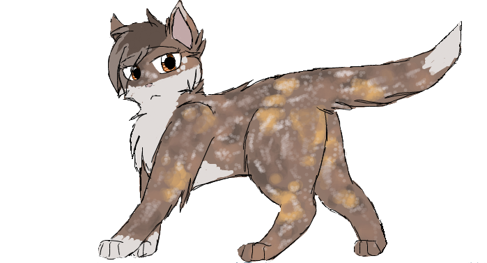 Warrior Cats Blossomkit Blossomfall by ...