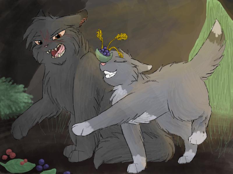 Warrior Cats Aschenpelz