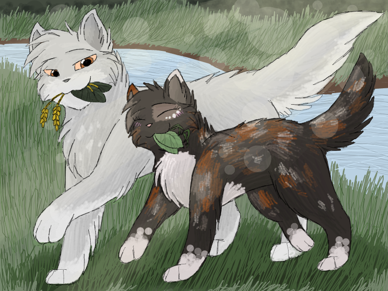 http://orig03.deviantart.net/48d2/f/2013/138/2/e/featherwhisker_and_spottedpaw_by_cascadingserenity-d65qv8a.png