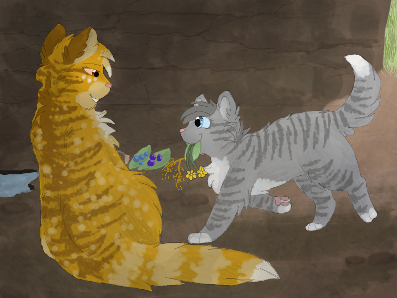 Warrior Cats Mothwing And Willowshine Mothwing And Hawkfrost...