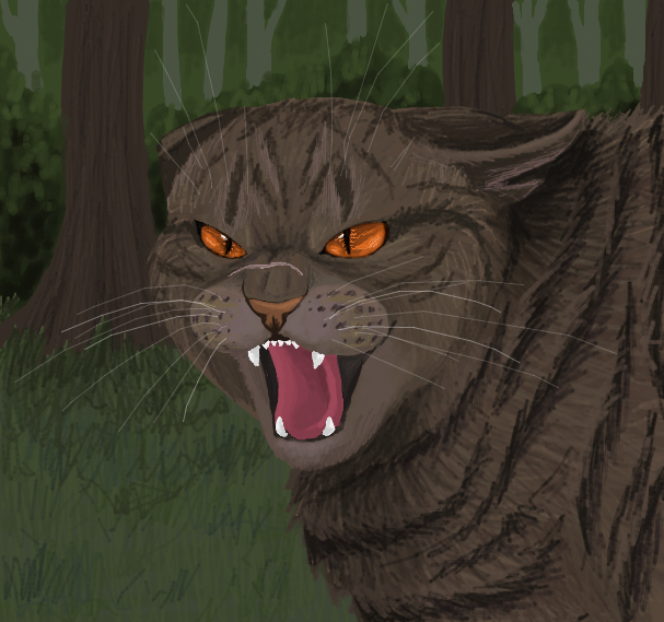 Warrior Cats Lead The Clan